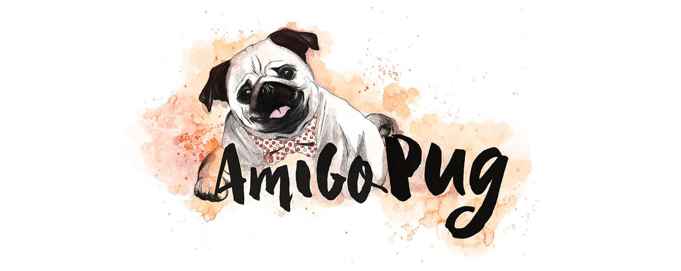 Tudo sobre a raça Pug