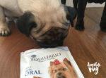 Petisco para cães